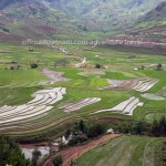 Northern Vietnam mountain rice fields